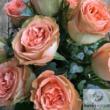 Romantikus rózsacsokor